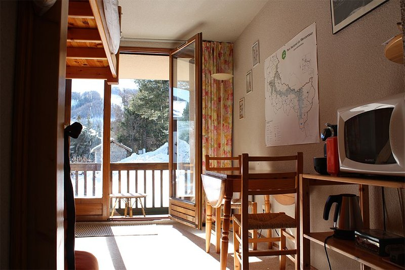 Studio Auron - Hailstones, vacation rental in Saint-Etienne-de-Tinee