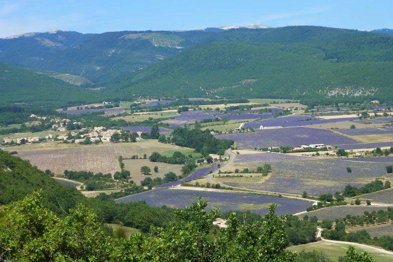 Au pays de la lavande, au pied de la montagne de Lure, holiday rental in Limans