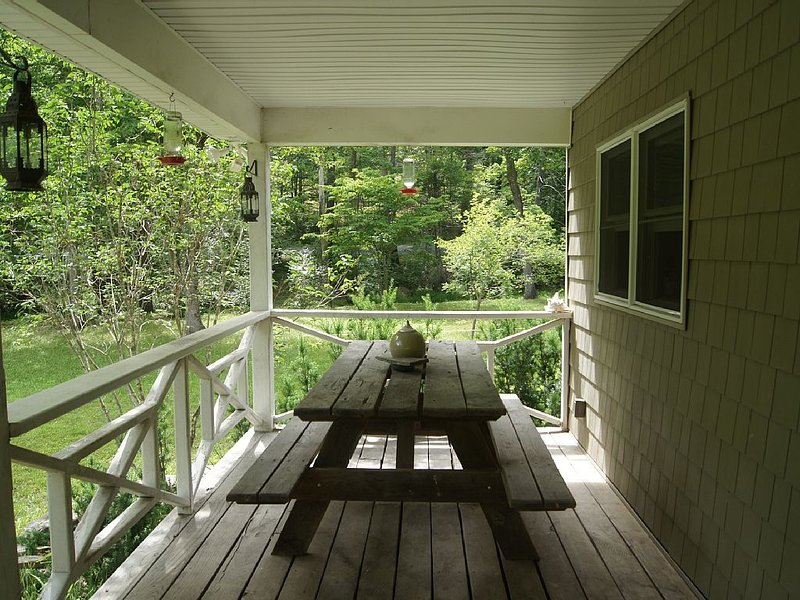 Secluded Hideway in Bath County, holiday rental in Williamsville