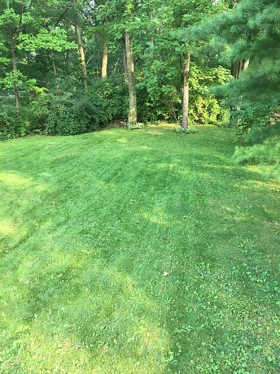 View of private backyard off of deck.