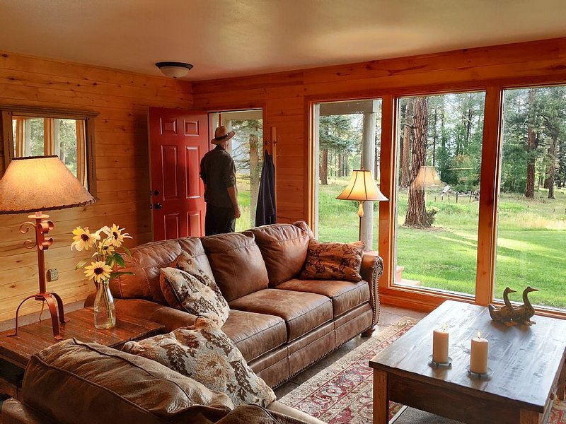 Cozy cabin in the heart of pristine wilderness, alquiler de vacaciones en Pagosa Springs
