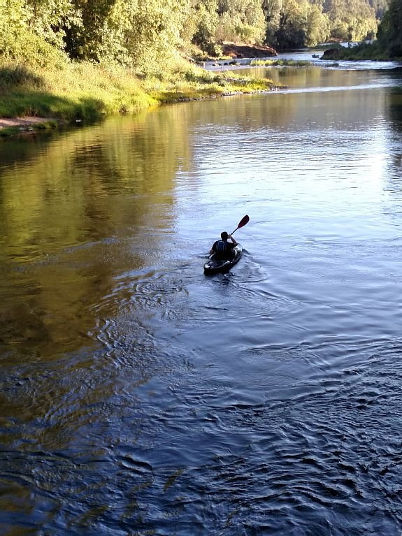 Visit The McKenzie River recreation area!