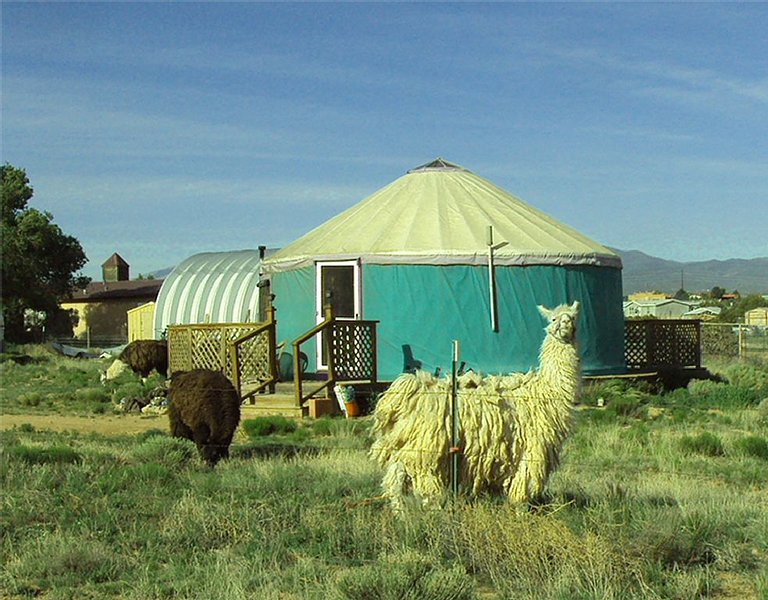 Beautiful Yurt With Amazing Views, location de vacances à Agua Fria