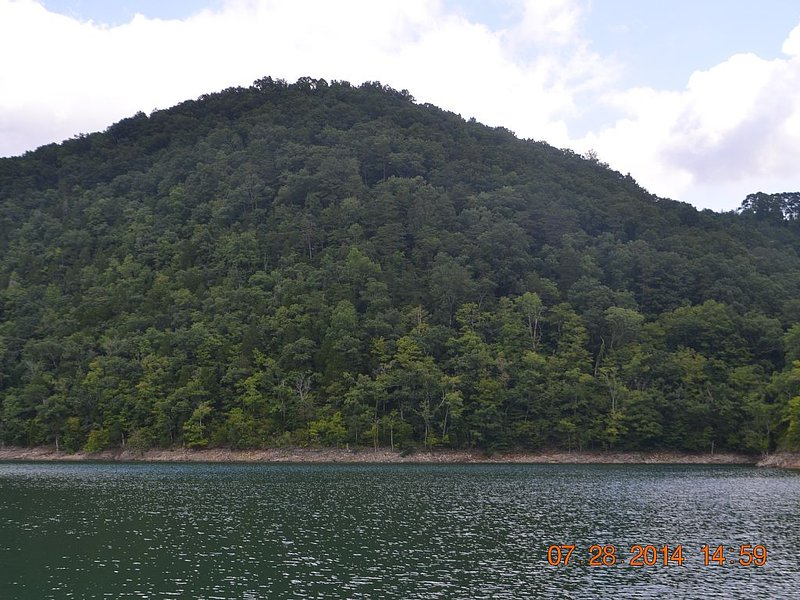 Mountain Home on 200 Acre Peninsula Lake Norris, holiday rental in Caryville