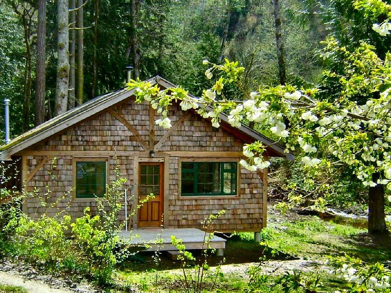 Forest Garden Cottage By The Ocean, vacation rental in Vananda