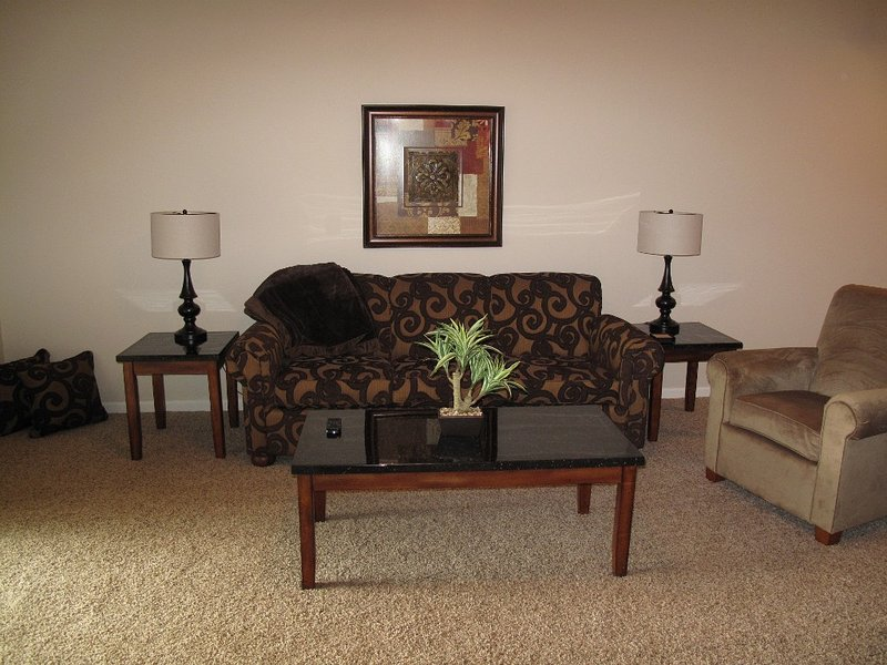 This is the living room with a pull out sofa bed.
