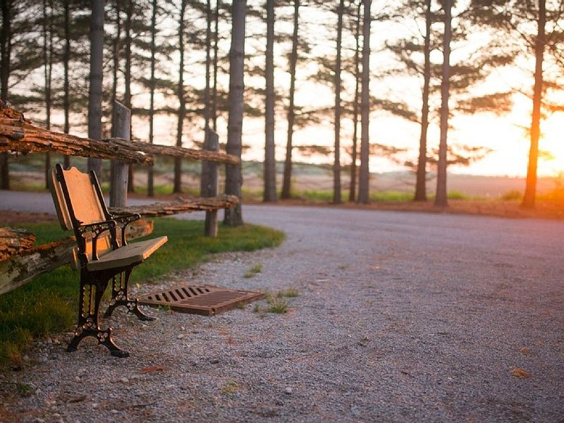 Awaken to nature's beauty at Whispering Pines Retreat!, holiday rental in Middlesex Centre