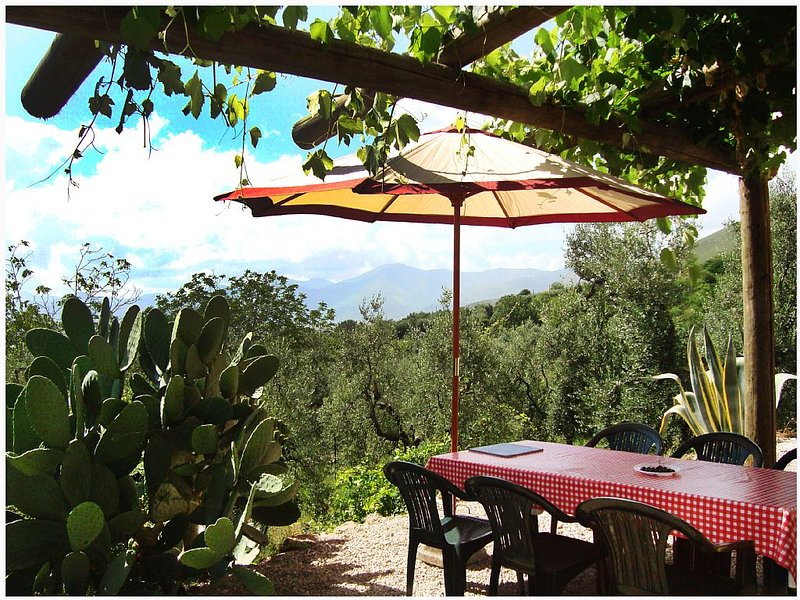 Old Casale Renovated In 2014 Set In Between The Mountains And The Sea., alquiler vacacional en Monte San Biagio