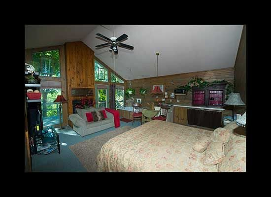 Best Views in Eureka from this Mountain Cabin near Beaver Lake  Full Glass Front, holiday rental in Holiday Island