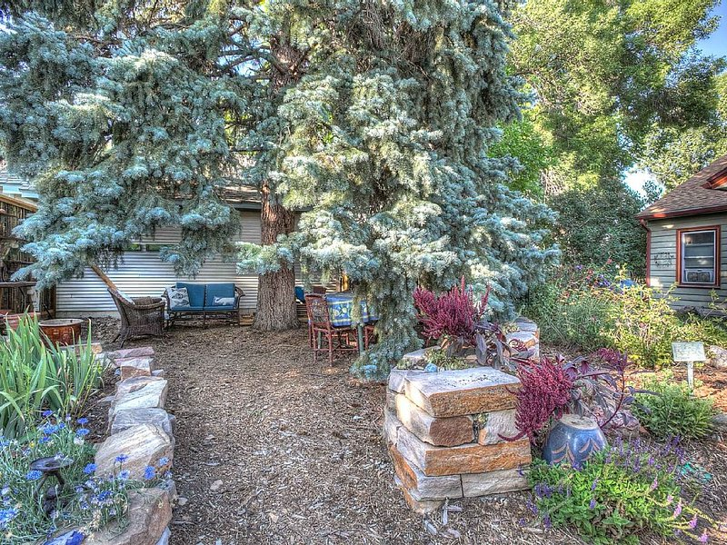 A special shady seating area under the blue spruce