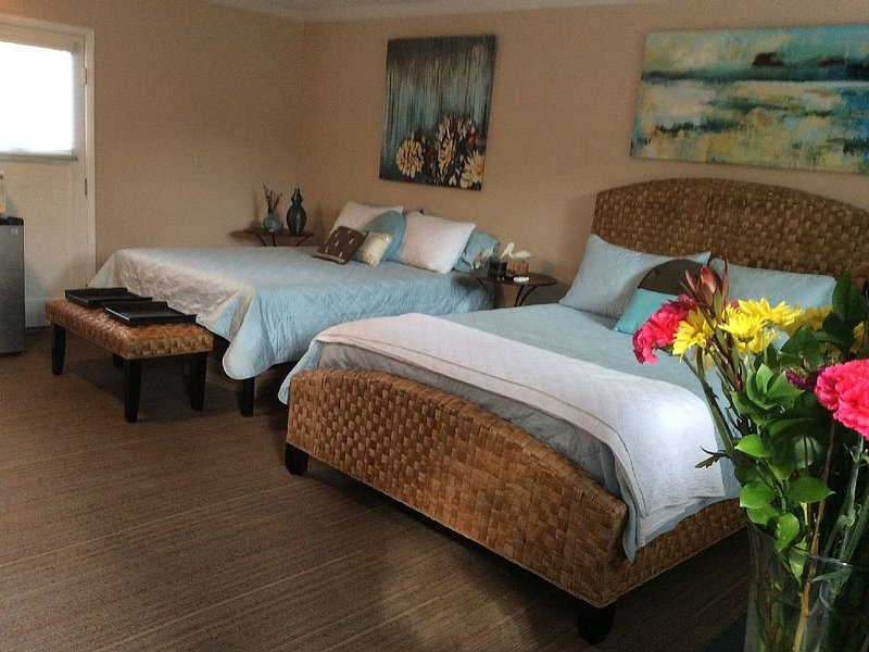 Day Trips to Sequoia, Coast, Wineries. Blocks from Downtown, Medical Center, holiday rental in Visalia
