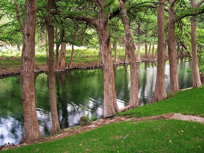 Private Home And River Front On The Frio River, holiday rental in Vanderpool
