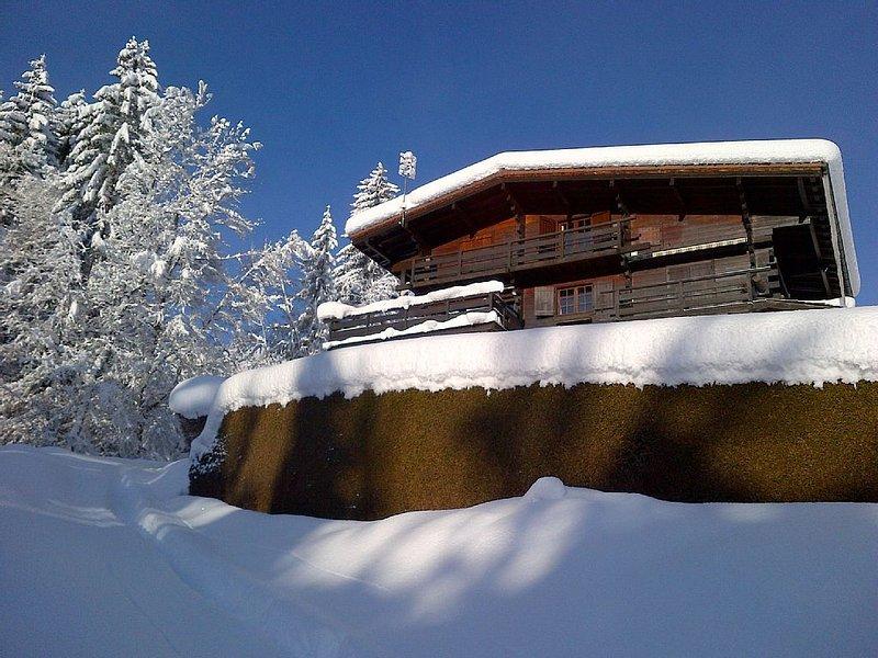 Charming large chalet with breathtaking Mont Blanc Views, location de vacances à Cordon