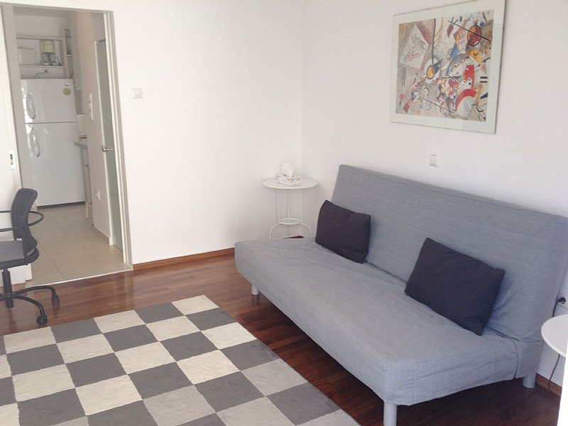 Luxurious,sunny, bright downtown apartment, holiday rental in Filothei