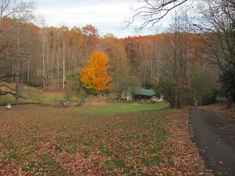 Secluded One Bedroom Cottage In Scenic Patrick County, VA, aluguéis de temporada em Willis