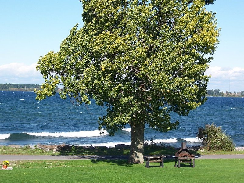 Waterfront Cottage, Cape Vincent, Tibbetts Point, Great Fun For The Whole Family, vacation rental in Cape Vincent