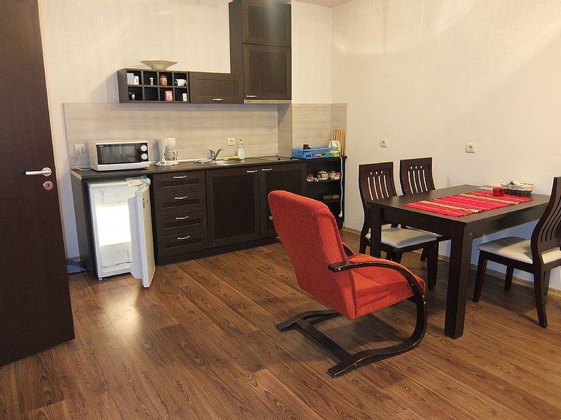 Privat Cosy Apartment 71m2 Next To Gondola Ski-lift, holiday rental in Razlog
