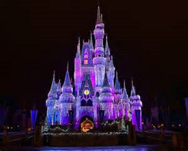 New Year's Eve At Disney World!  Wyndham's Bonnet Creek Resort, holiday rental in Old Town