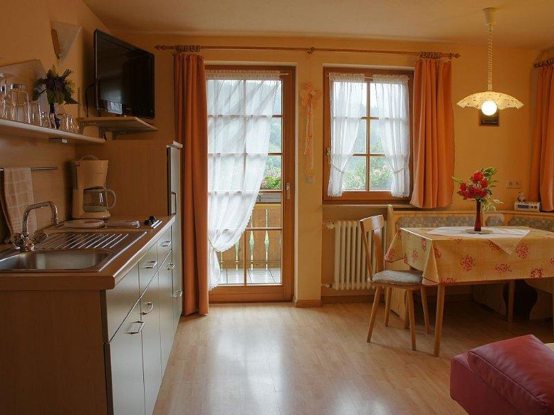 Fewo Typ A, 'unsere Sonnige', 1 Wohn-/Schlafraum, max. 2 Personen, holiday rental in Sankt Margen