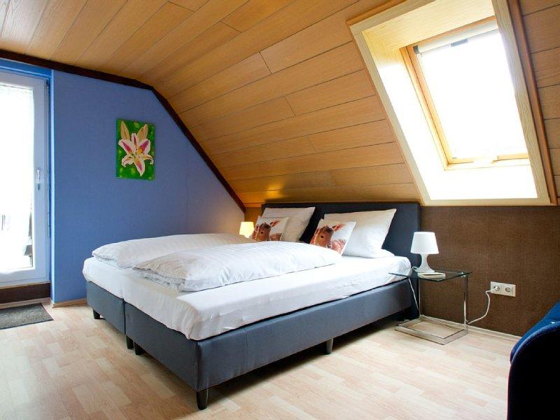 Ferienwohnung Larissa mit 40qm, 1 separates Schlafzimmer für maximal 2 Personen, holiday rental in Bad Rippoldsau-Schapbach