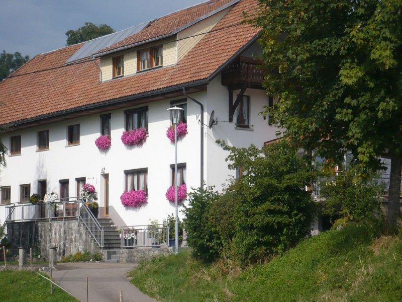 Fewo**** mit ca. 70qm, 2 Schlafzimmer, für maximal 4 Personen, vacation rental in Endingen