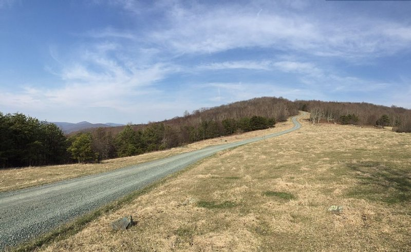 Buck's Elbow Mtn. Road - the last long climb to the top of the mountain.