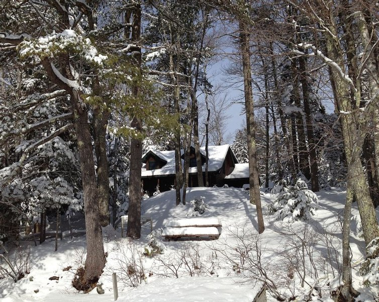 Coleman Pond Log Home - view from the lake in snow.