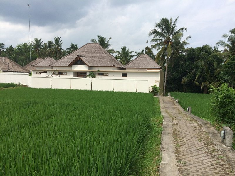 View of villa from road through ricefields