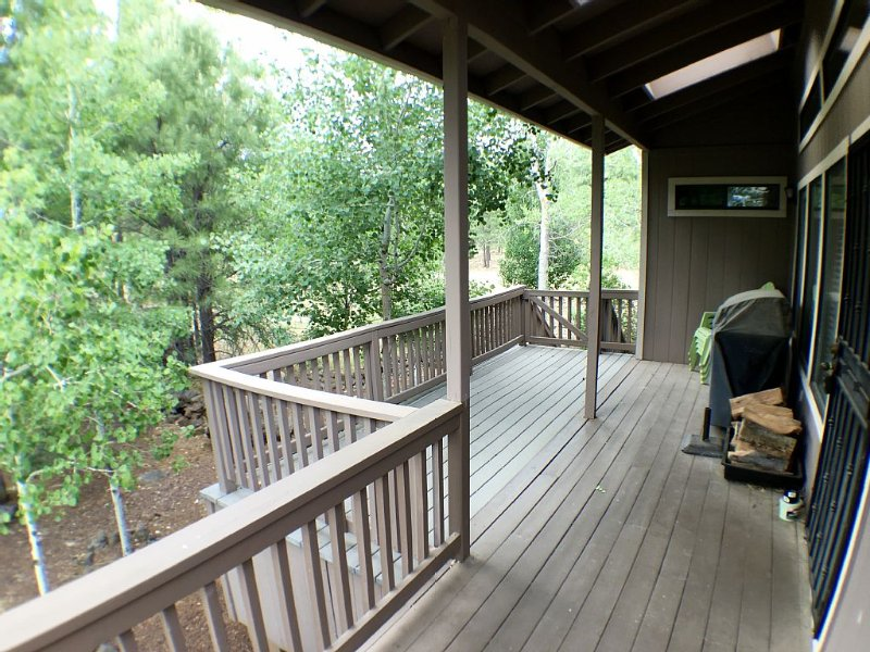 Fun For The Whole Family - Large Porch In The Trees - Loft Games For The Kids!, location de vacances à Vernon