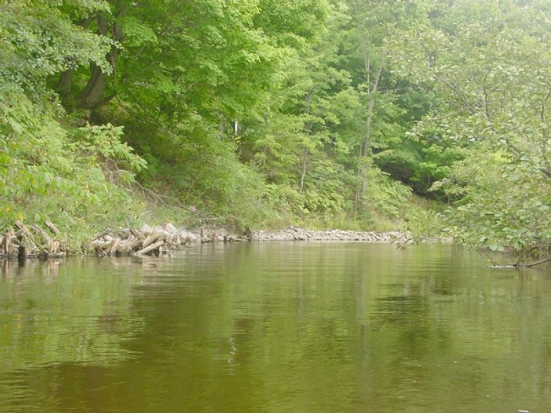 Betsie River Cabin with Up North charm   A/C - WiFi  1 mile to Crystal Mountain, location de vacances à Benzie County
