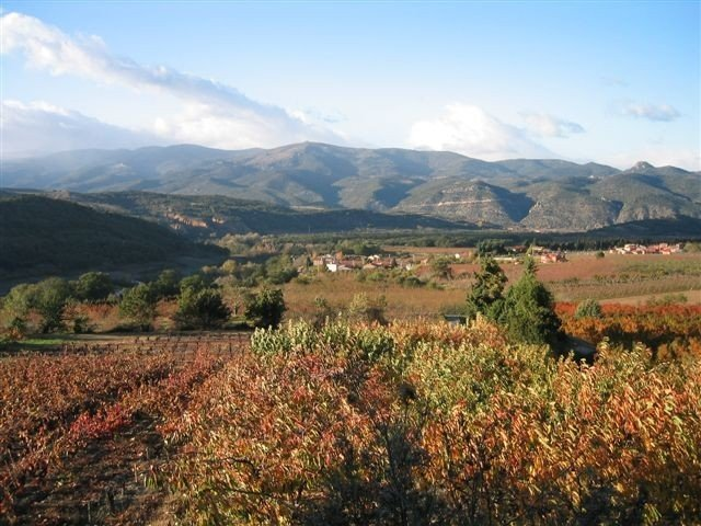 Beautiful village home in the foothills of the Pyrenees, holiday rental in Vinca