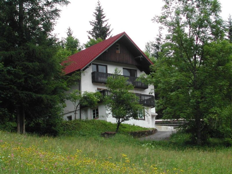 Alpine Chalet in Pl. pod Golico, sleeps 4, mountain views, 25 mins from Bled, holiday rental in Bodental