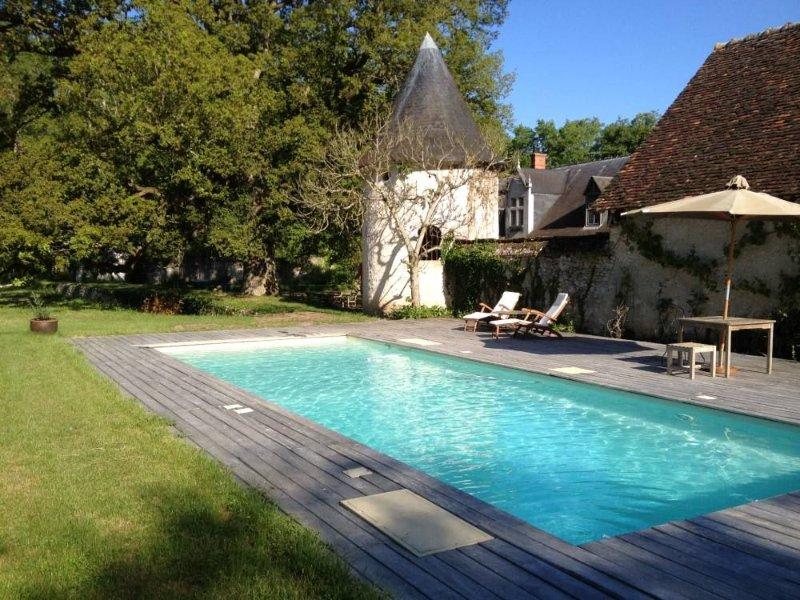 Belle et grande Demeure XVI ème avec Piscine au cœur des Châteaux de la Loire, holiday rental in Mont-pres-Chambord
