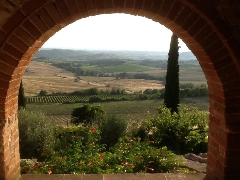 A view of San Gimignano from  the top of a hill covered with vineyards, vacation rental in Castellina In Chianti