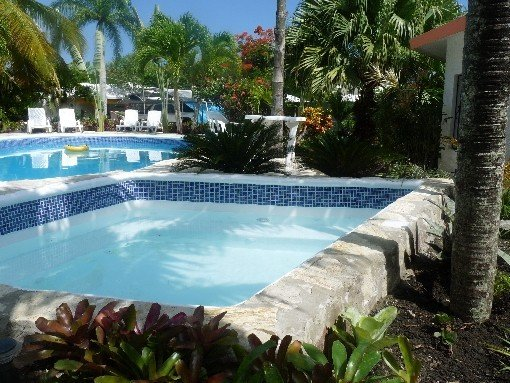 Romantic villa with private pool and jacuzzi in a tropical garden., vacation rental in Cabarete