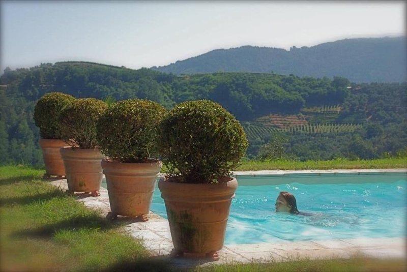 Aux portes de Lucca. L'art de vivre en Toscane: Maison de charme avec piscine, vacation rental in Lucca