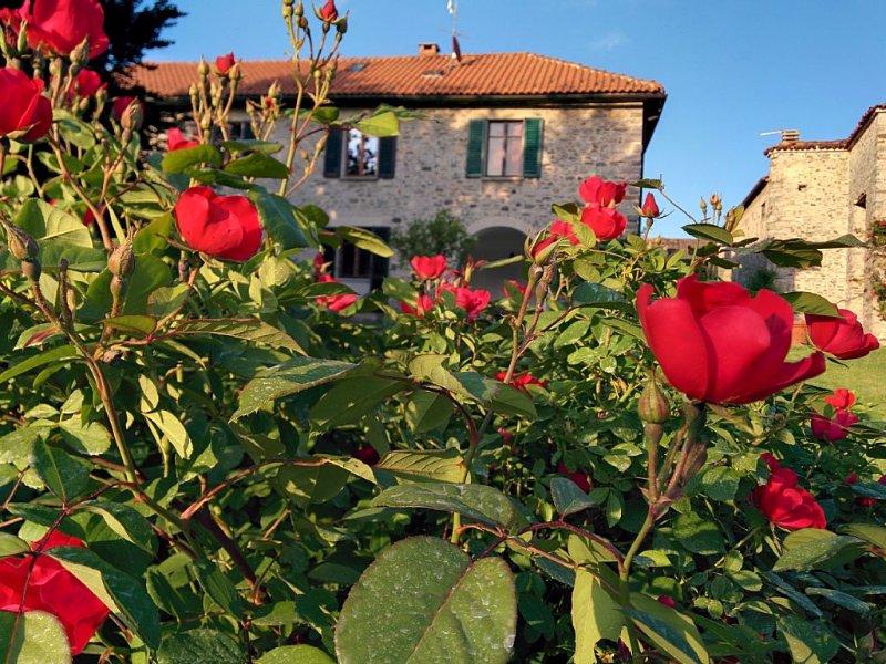 Casa con giardino. Vista su lago d'Orta e Monte Rosa.  Wifi., holiday rental in Ameno