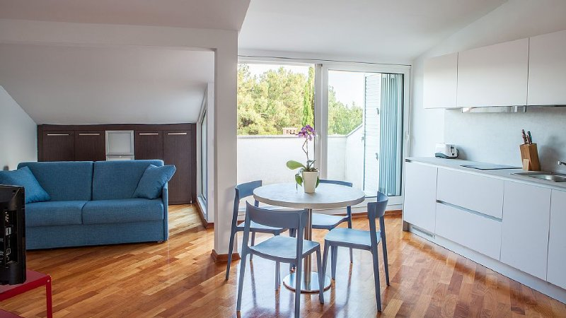 EXCLUSIVE ATTIC LOFT RIGHT ABOVE THE BEACH!, location de vacances à Baska