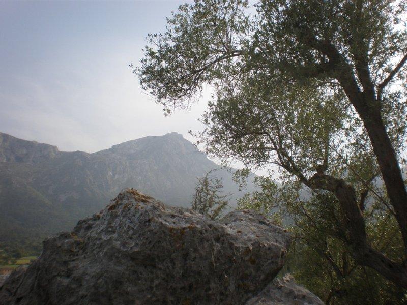Els Casals, finca rural, impresionantes vistas, cerca de Pollensa y de la playa, vacation rental in Pollenca