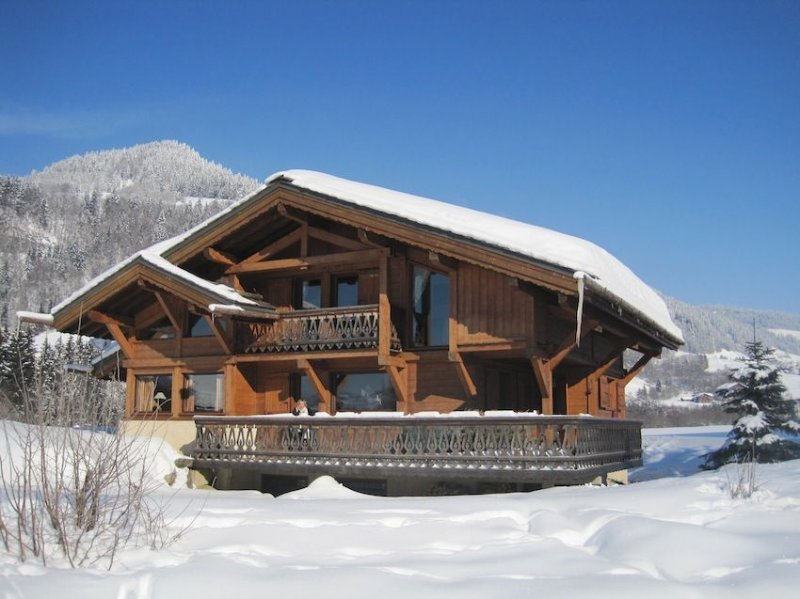 Beautiful and Authentic Alpine Chalet for Skiing and Summer Activities at Megeve, holiday rental in Praz Sur Arly