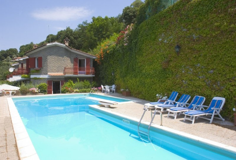 Isolated stunning villa, panoramic lake view, private swimming pool and beach, holiday rental in Trevignano Romano