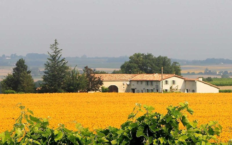 ****Escape to breath-taking views and the gentle Charente-Maritime climate****, holiday rental in Coux