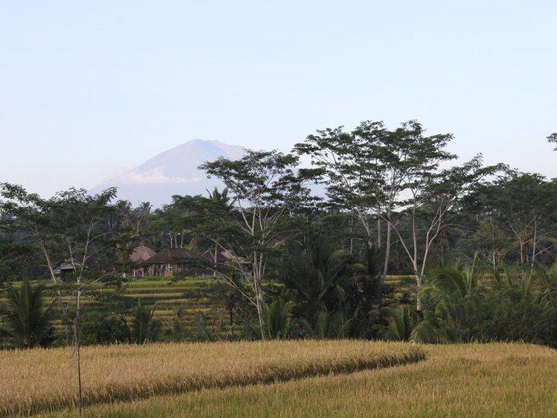 Vue de la villa sur le Mt Agung