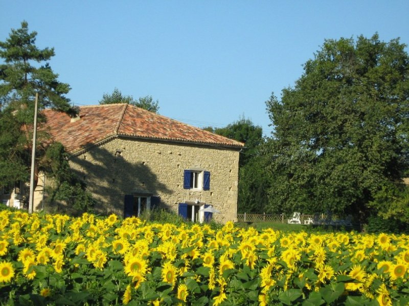 Stunning and sensitively converted barn with 14x7m pool, vacation rental in Gers