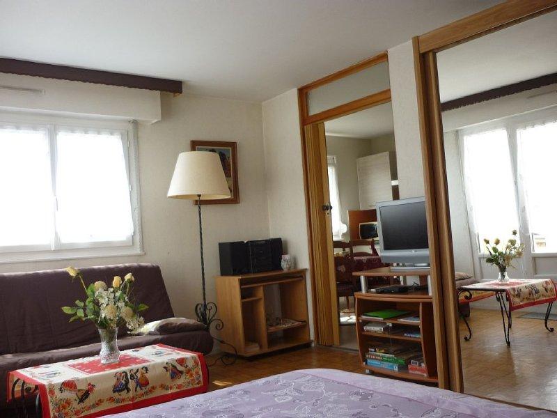 appartement 40m2 situé à 5 minutes à pied du centre ville avec belle terrasse, Ferienwohnung in Colmar