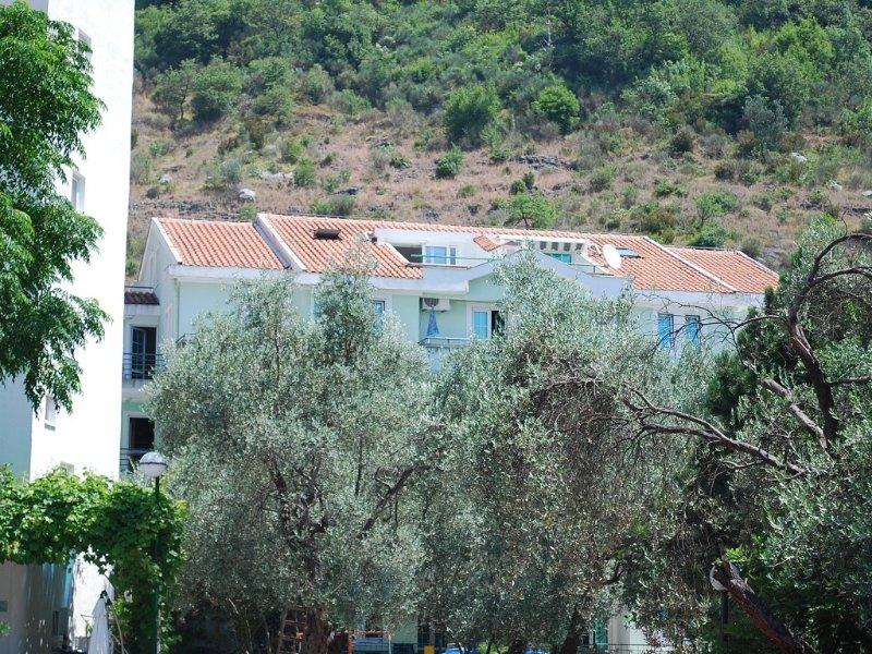 Spacious apartment on the Budva Riviera, 350 metres from a beautiful beach, alquiler de vacaciones en Municipio de Budva