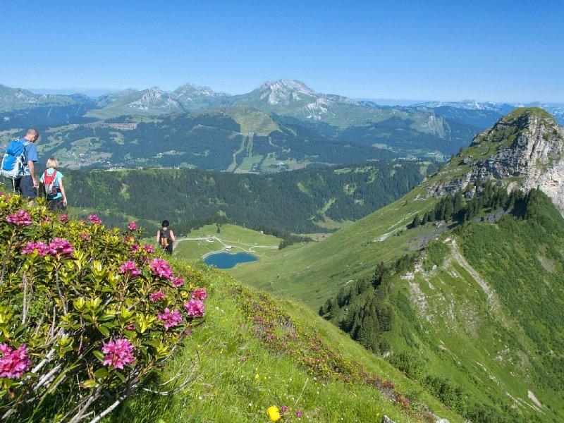 Epic hiking and stunning views!