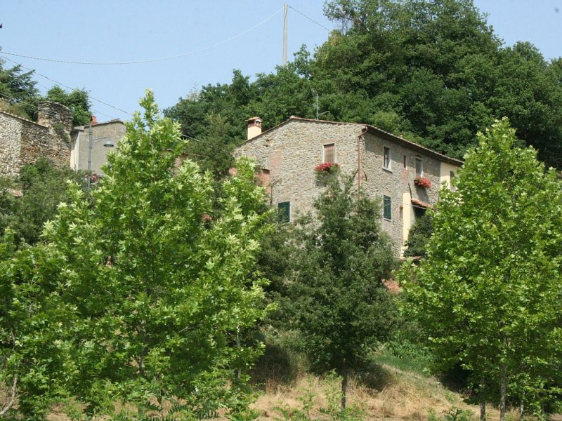 CASA TIPICA TOSCANA FINEMENTE RISTRUTTURATA, location de vacances à Arezzo