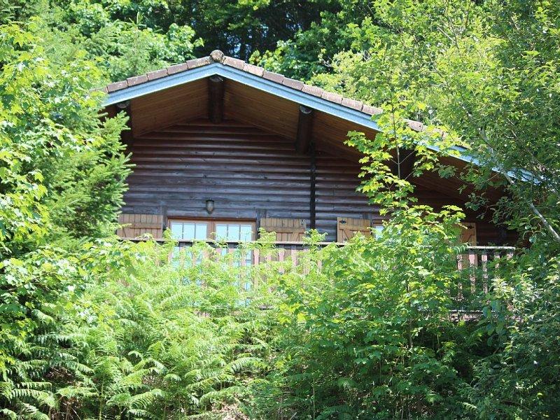 Chalet en montagne dans les hautes Vosges, holiday rental in Basse-sur-le-Rupt