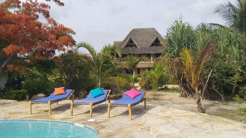Dream house on the beach, vacation rental in Michamvi